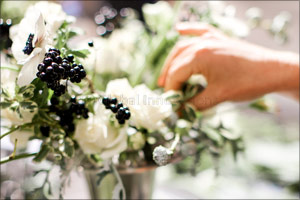 Talent blossoms as Marina Home Interiors and Bliss host Floristry masterclass with internationally a ...