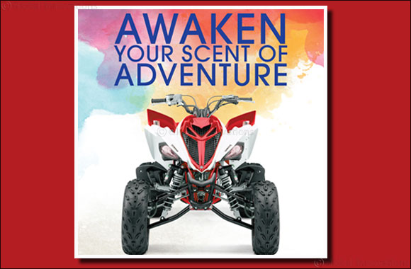 Awaken Your Scent of Adventure at Paris Gallery