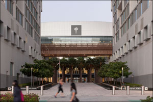 NYUAD Announces Recipients of Sheikh Mohamed bin Zayed Scholarship for Outstanding High School Stude ...