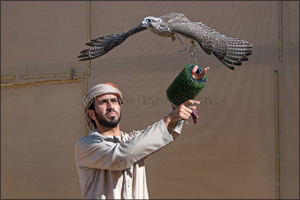 F3 and MRM Falcon teams share honours in National Day Championship for Falconry