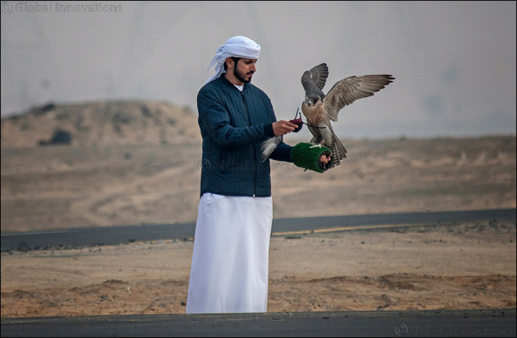 MRM Falcon and F3 fastest as Fazza Championship for Falconry Tilwah kicks off with RC Airplane competition