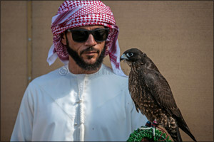 MRM Falcons and F3 shatter records on third day of Fazza Championship for Falconry Tilwah