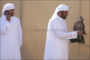 The Falcon �Ghaith' makes winning start for Fazza (Sheikh Hamdan) in Falconry Tilwah Championship