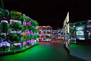 Sheikh Mohammed launches �Climate Change Reimagined�: An exhibition by Museum of the Future