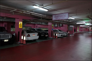 Al Wahda Mall first mall in Abu Dhabi to introduce �Pink Parking' for women