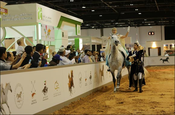 Dubai International Horse Fair Launches Instagram Competition With Hamdan Bin Mohammed Bin Rashid Al Maktoum International Photography Award