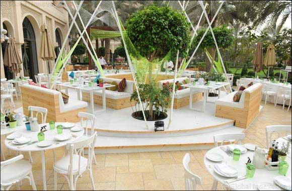 Sababa Lounge Opening