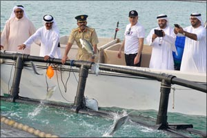 Launch of fish stock promotion program