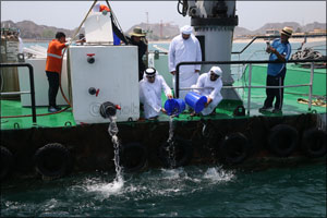 Minister of Climate Change and Environment Releasing 30,000 Fish in Marine Protected Areas in Dibba, ...