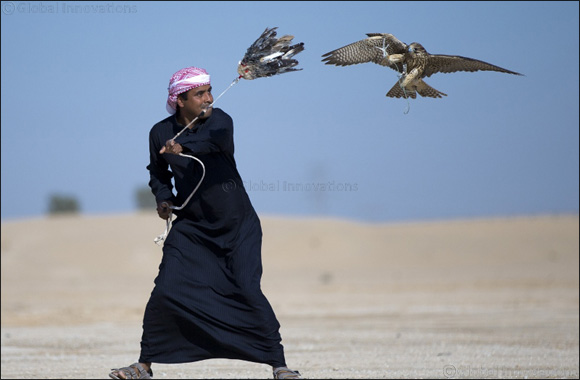 Registration Opens for the Fazza Championships for Falconry 2018
