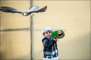 Juniors light up Fazza Championship for Falconry - Telwah