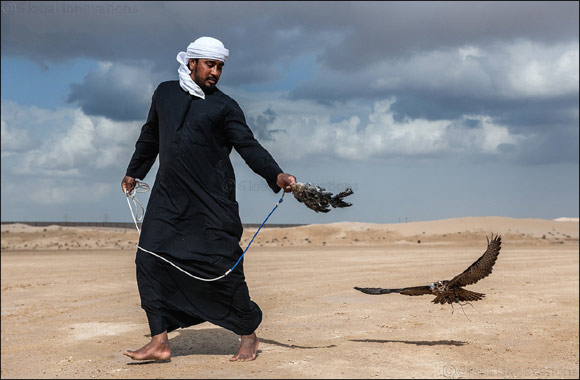 Dubai-based Briton makes waves on debut in Fazza Championship for Falconry – Telwah