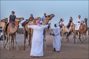 Registration for the 5th edition of Camel Trek is now open