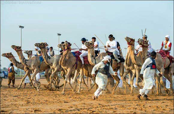 National Day Camel Marathon set to take place in February