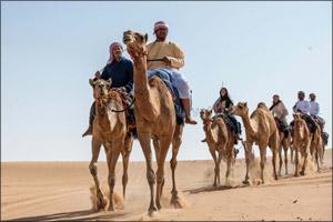 UAE residents go on a two-week Camel Trek across the UAE desert