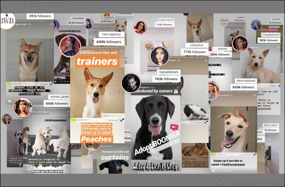 Celebrity Influencers rally behind K9 Friends as 219 dogs adopted