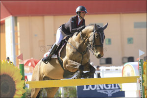 12th Week of Show Jumping Competitions Hosted in Al Ain This Weekend