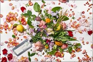 Herbal Essences & The Royal Botanic Gardens, Kew � A Match Made In Hair Heaven!