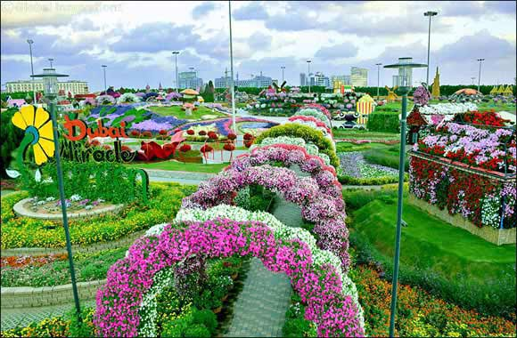 Blooming in its eighth edition, Dubai Miracle Garden offers bunch of new attractions, including more record-breaking floral spectacles