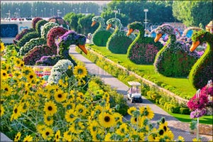 Blooming in its eighth edition, Dubai Miracle Garden offers bunch of new attractions, including more ...