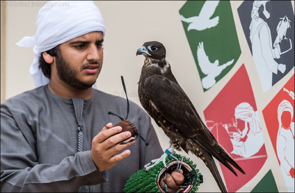 Emiratis deepen their love for falconry