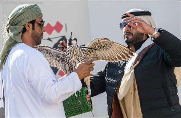 UAE Falconers League Kick Starts Competition with 10 teams in Al Ruwayyah