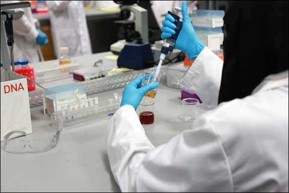 NYU Abu Dhabi Researchers Design Proteins That Can Be Utilized to Combat Alzheimer's Disease