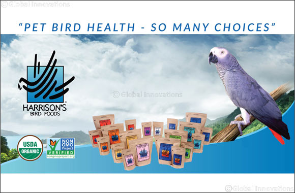 Importance of Healthy Diet for Your Bird