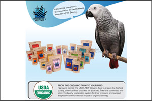 Why Should you Opt for Certified Organic Food for Birds