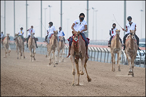 Emiratis Al Shamsi and Yahya Al Ketbi  Dominate 2nd Preliminary Race of National Day Camel Marathon