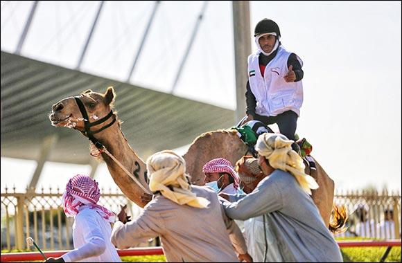 Emirati Sultan Al Shamsi dominates 6th National Day Camel Marathon in Dubai