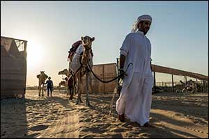 Registration for Camel Training  is now Open