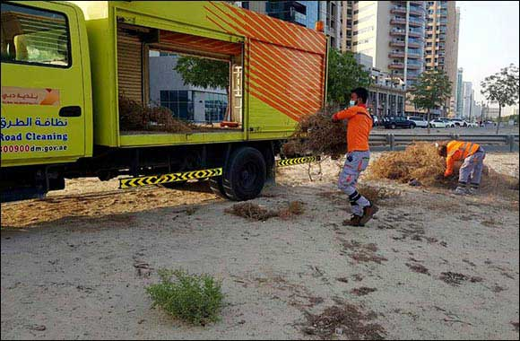 Dubai Municipality Carries Out Campaign to Clean Main Roads