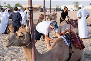 Hamdan Bin Mohammed Heritage Center announces:  Few days left before Registration closes for  Camel  ...