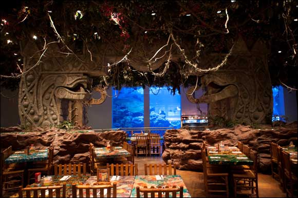Enjoy an iftar with your family at the Rainforest Cafe