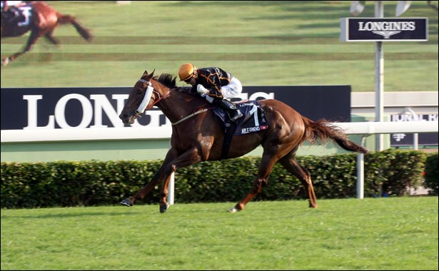 Just A Way honoured as the 2014 Longines World's Best Racehorse